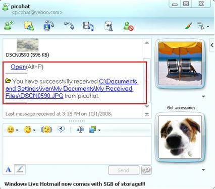 Completed Windows Live Messenger File Transfer