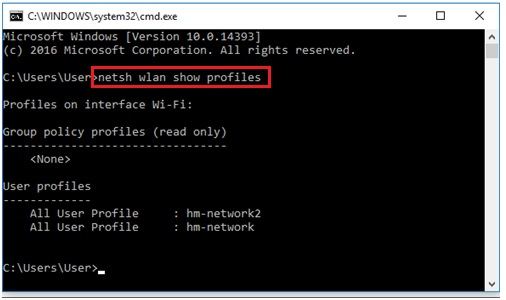 netsh wlan show profiles in Windows 10