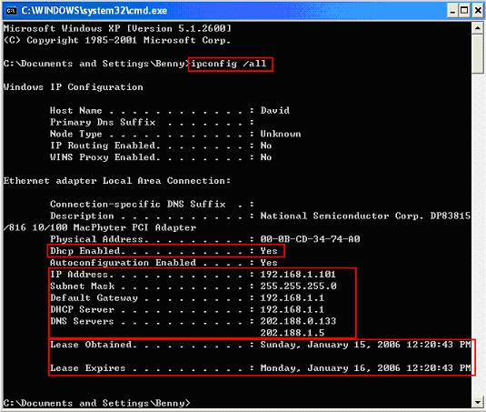 DHCP ipconfig